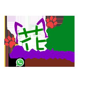 同志友善服務機構 醫護服務、心理諮詢及輔導 Happy Reiki 花貓工作室